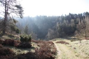 løberuter i Mols Bjerge